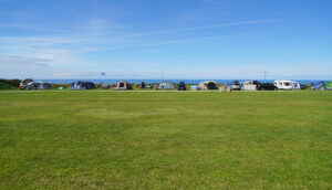 14 Serviced pitches in the games area